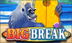 big-break-slot