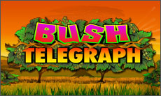 bush-telegraph-slot-online